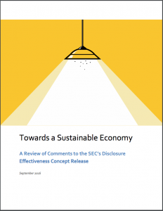 cover-report-towards-a-sustainable-economy-a-review-of-comments-to-the-secs-disclosure-effectiveness-concept-release